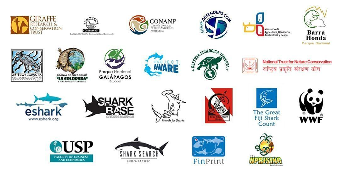 Projects Abroad volunteers work together with our conservation partner organisations to protect the environment.